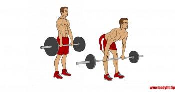 Kreuzheben mit gestreckten Beinen – Übungsbeschreibung